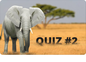 Endangered Species - Quiz #2