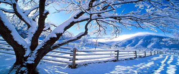 Śnieżna sceneria
