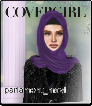 parlament_mavi